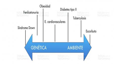 genetica ambiete