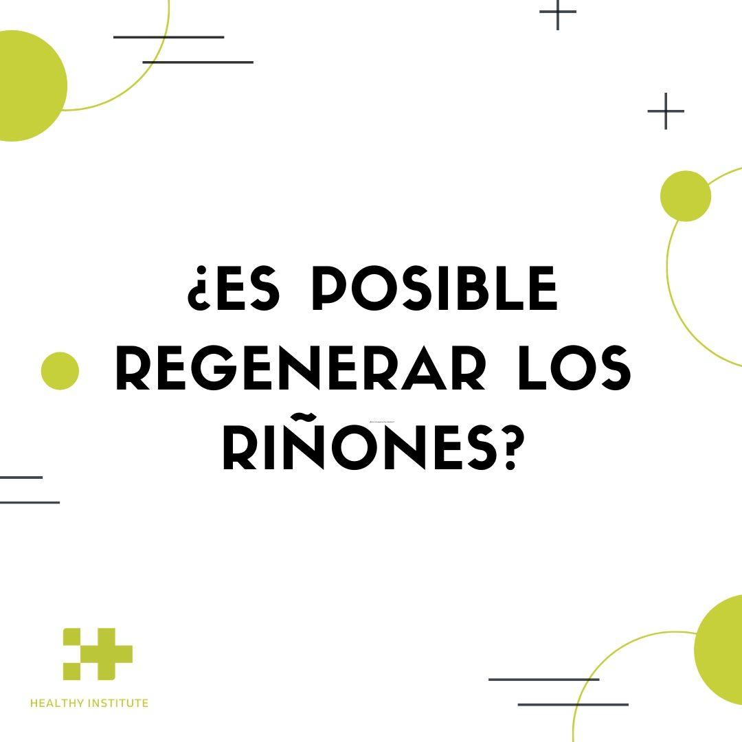 es-posible-regenerar-los-riñores-regeneracion-renal