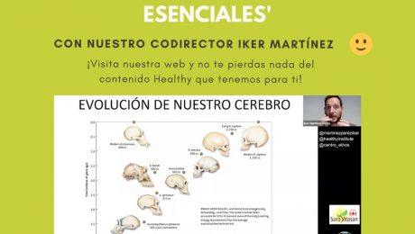 evolucion de nuestro cerebro y nutrientes estructurales esenciales