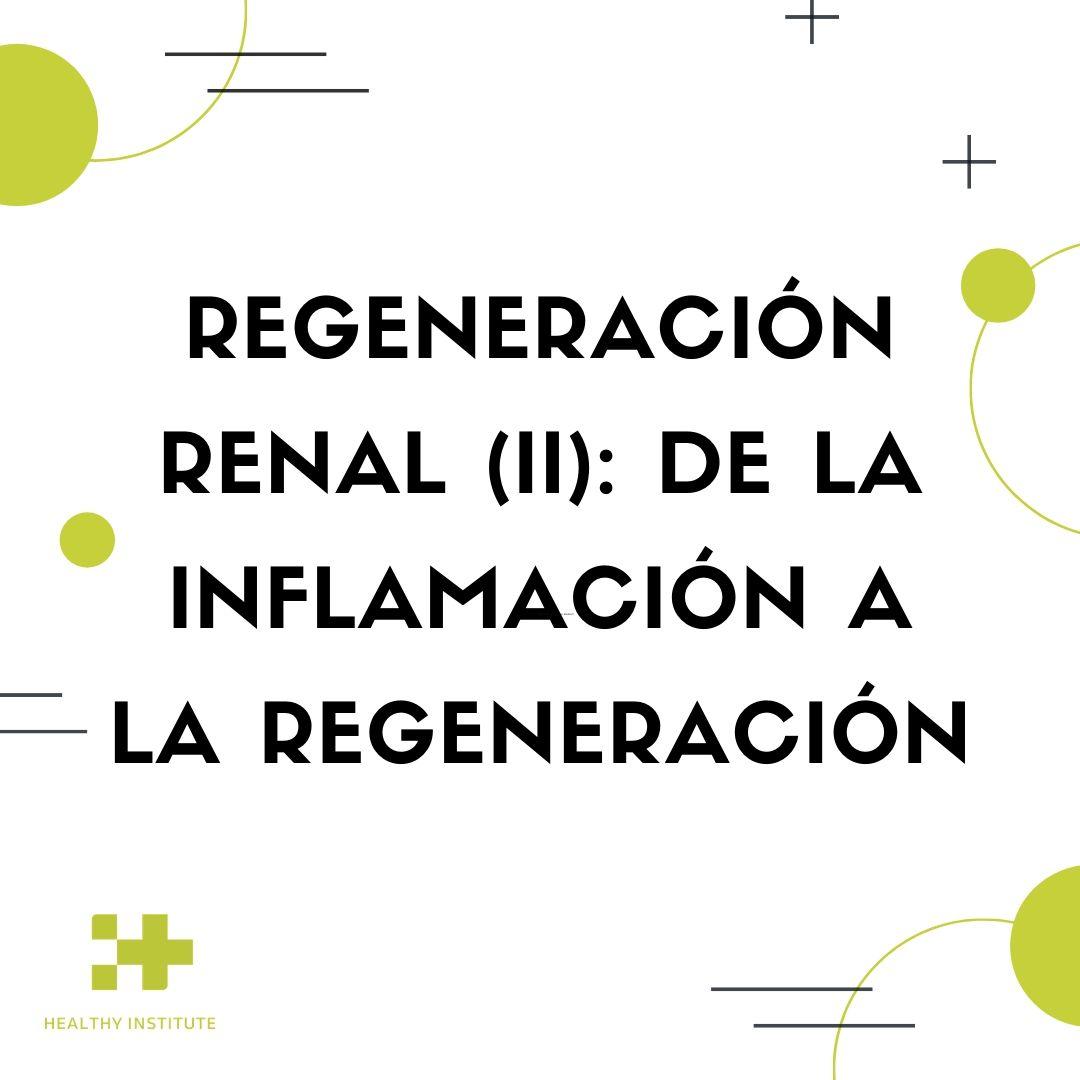 regeneracion renal ii de la inflamacion a la regeneracion