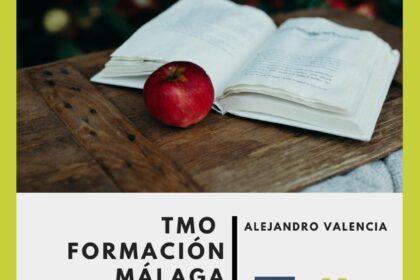 Sede Málaga Psiconeuroinmmunología Clínica (PNIc) formaciones Healthy Institute