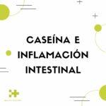Caseína e inflamación intestinal